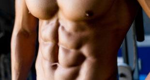 افضل تمارين تشريح عضلات الجسم