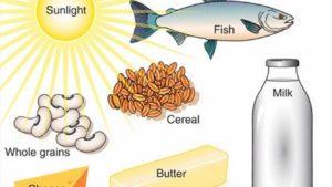 ما هي أنواع الأطعمة الغنية بفيتامين ب